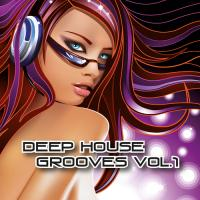 Deep House Grooves, Vol. 1